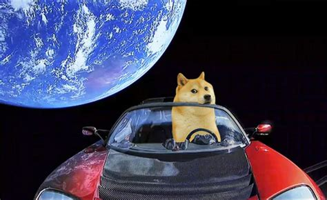 """Who let the doge out? Musk, Musk! Once a meme, """"Dogecoin ..."""