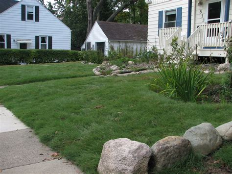 Grass Alternatives & Buffalo Grass In Ann Arbor