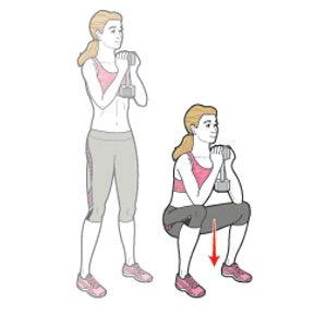 Goblet Squat  Body Transformations, Squat And Build Muscle