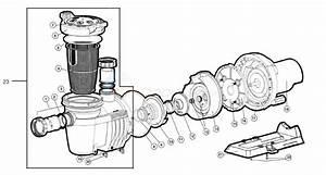 Hayward Northstar Sp4000 Series Pump  2008