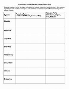 Supporting Evidence Worksheet