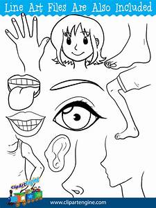 Face Parts Clipart - Cliparts Galleries