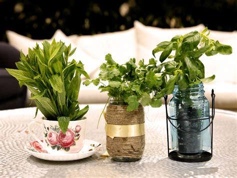 Creating An Indoor Winter Herb Garden