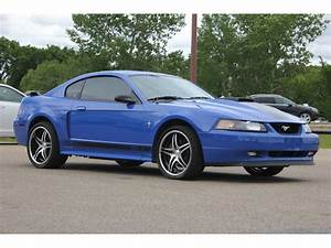 2003 Ford Mustang Mach 1 for Sale | ClassicCars.com | CC-993949