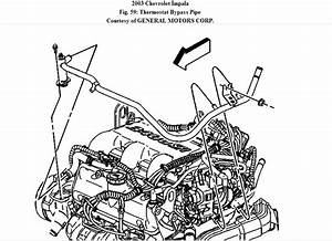 Gm 3100 Wiring Diagram