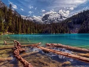 40+ Beautiful Nature Wallpapers HD for Desktop ...