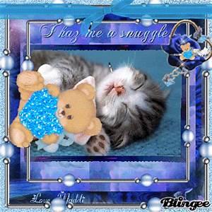 I Haz Me a Snuggle! Picture #97885874 | Blingee.com