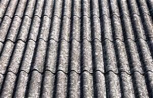 Plaque Fibro Ciment Plate : traitement toiture anti mousse prix avignon 84 ~ Dailycaller-alerts.com Idées de Décoration