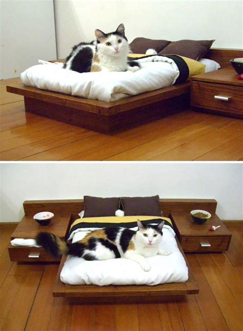 mini cat bedroom furniture homemydesign