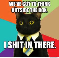 cat outside the box quotes we got this meme quotesgram