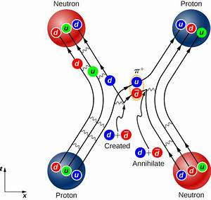 Strong Nuclear Force  The Standard Model  By Openstax