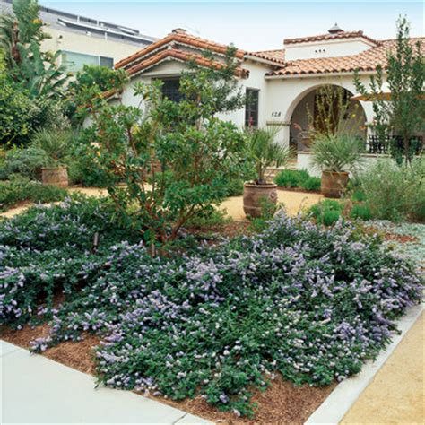 front yard landscaping ideas low water water wise front yard landscaping without grass sunset