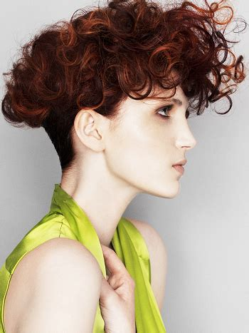Hairstyles For Curly Hair For by Pictures Hairstyles For Curly Hair