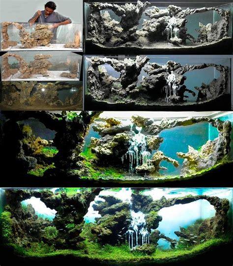 Aquascape Design Software - 26 best aquascape design images on fish tanks