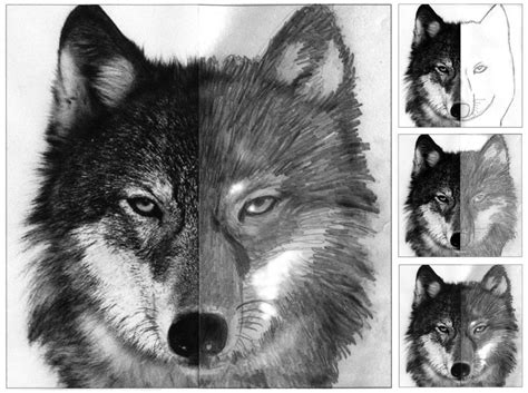 Finish The Wolf Face · Art Projects For Kids