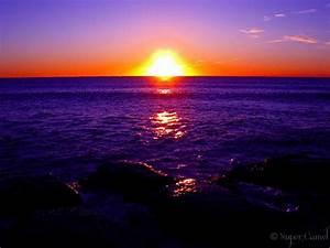Collaroy Beach, Sydney - purple sunrise | Collaroy Beach ...