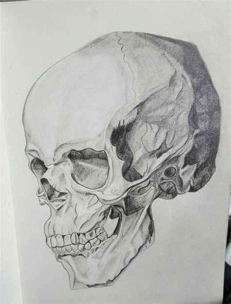 tonal skull sketch image drawn but original does