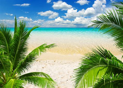 Summer Desktop Backgrounds Hd Tropic Beach Background Gallery Yopriceville High Quality Images And Transparent Png Free