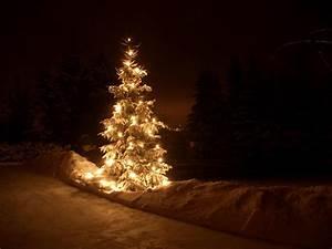 Christmas tree, beautiful, Christmas lightining, night ...