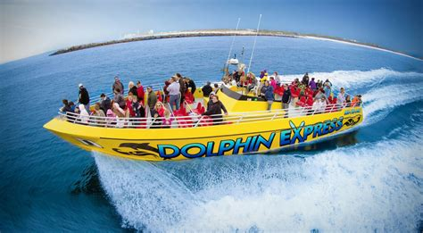 Pontoon Boat Rental Oahu by Things To Do In Panama City Pontoons Dolphins