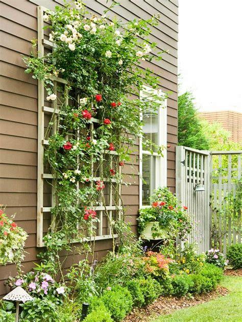 les plantes grimpantes beaucoup d id 233 es pour le jardin
