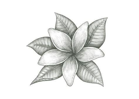 Jasmine Flower Tattoos