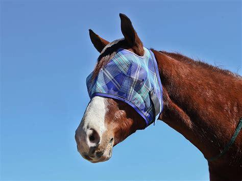 fly mask horse masks kpp kensington uv bites blankets