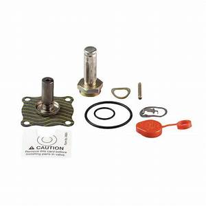 Valve Rebuild Kit With Instructions 302328