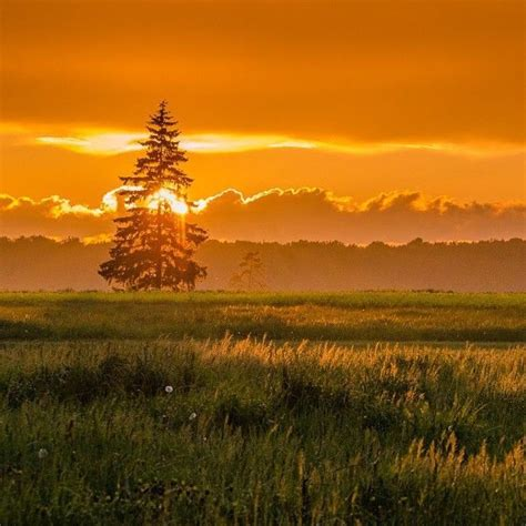 40 ļoti, ļoti, ļoti skaistas bildes ar Latvijas vasaru ...