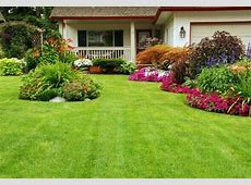 Tipos de grama para jardim residencial Central da Grama