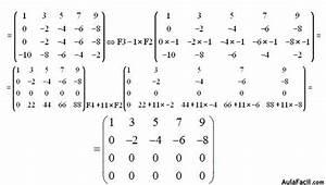 Determinante 4x4 Matrix Berechnen : curso gratis de matrices y determinantes calcular el rango de las matrices ejercicios 30 y ~ Themetempest.com Abrechnung