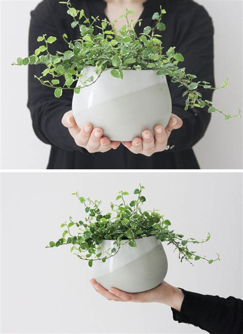 modern ceramic planter home decor ideas 6 ways to include ceramic in your