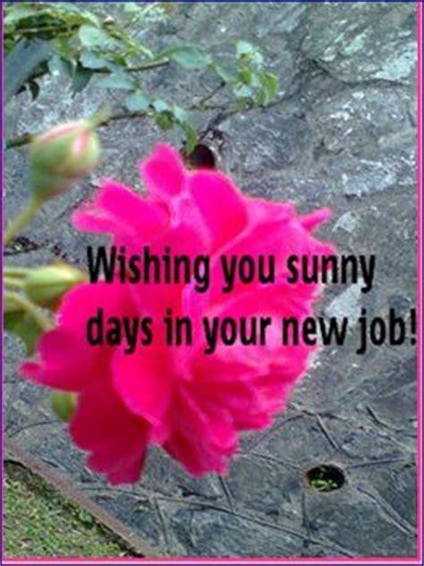 sunny days   job   work  ecards greeting cards