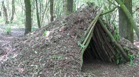 debris hut survival shelter how to build survival shelters in the wild