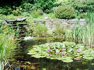 Teich Mit Wasserfall : nabbefeld schages garten und landschaftsbau teich ~ Markanthonyermac.com Haus und Dekorationen