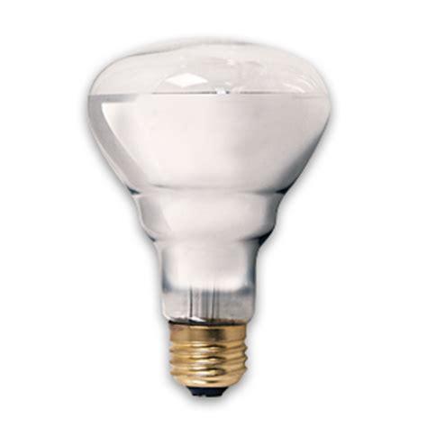 reptile basking bulb 50 watt