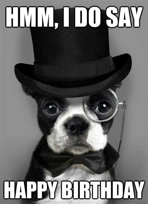 Memes Happy Birthday - happy birthday meme dog google search funny pinterest happy birthday meme birthday