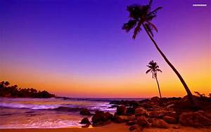 Tropical Beach Sunset Colors Wallpaper