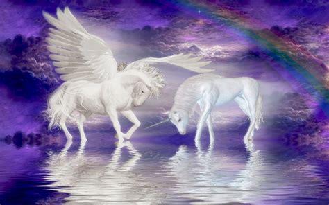 unicorns horse cloud rainbow fantasy wallpaper
