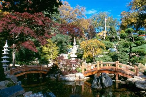 17 best images about fall gardens at hillwood on