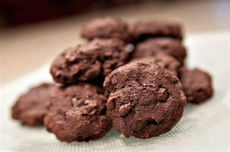 Yes, a diabetic patient can eat the abomination that is sugar free ice cream. Diabetic Cookie Recipe: Chocolate Chocolate Chip Cookies - Recipes for Diabetics