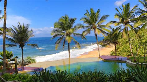 kovalam resort niraamaya retreats surya samudra
