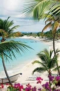Welche Erde Für Palmen : die hawaii inseln die lokation des traumurlaubs ~ Watch28wear.com Haus und Dekorationen