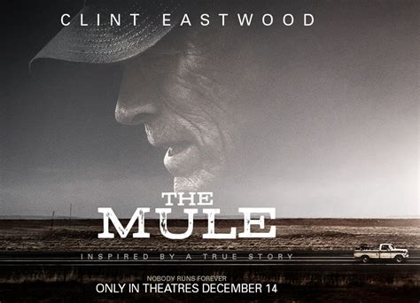 Given the timeline of the mule, it makes sense that the film. Enter to Win a $500 Pre-paid Credit Card and Passes to See ...
