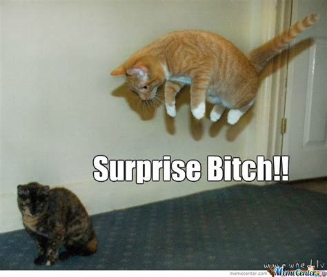 Surprise Bitch Meme - 50 very funny ninja meme collection golfian com