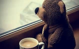 teddy bears coffee cup sitting sad hd wallpapers