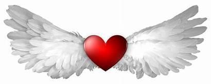 Wings Heaven Angel Heart Aesthetic Hearts Beauty
