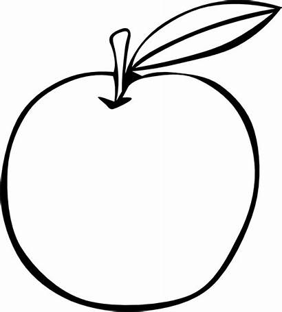 Apple Coloring Fruit Pages Outline Fruits Clipart
