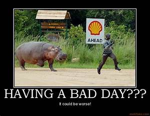 HAVING A BAD DAY QUOTES FUNNY image quotes at relatably.com