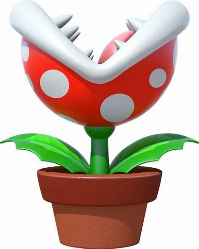 Eating Plants Plant Piranha Bestiarium Mario Super